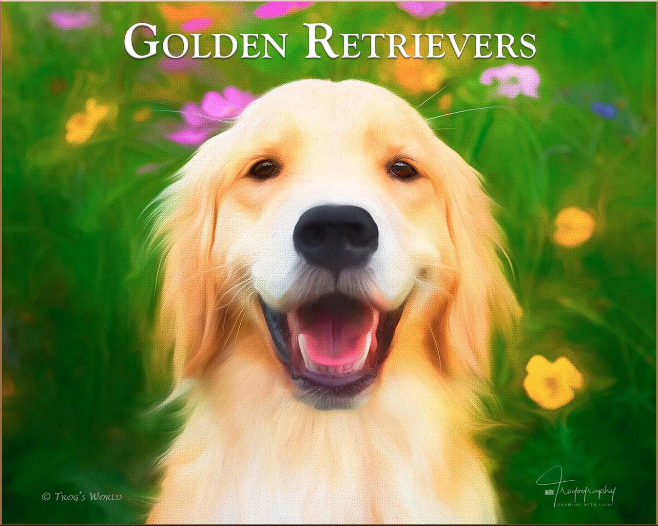 Golden Retriever smiling