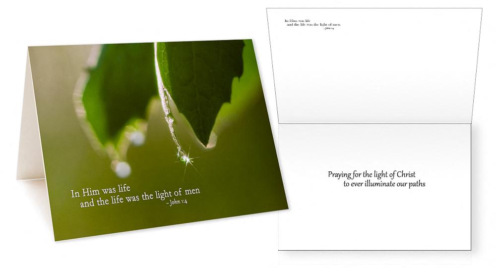 Scriptures in Pictures Verses III Greeting Card